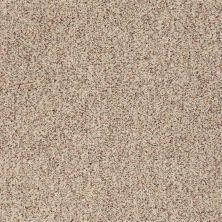 Anderson Tuftex Serendipity II Berber Tweed 0121B_Z6941