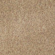Anderson Tuftex Serendipity II Berber Raw Silk 0172B_Z6941