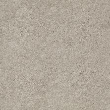 Anderson Tuftex Classics Serendipity II Silver Leaf 00541_Z6942