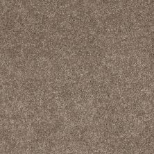 Anderson Tuftex Serendipity II Simply Taupe 00572_Z6942