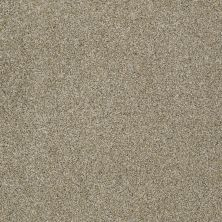 Anderson Tuftex Cooper Inca Gold 00115_Z6944