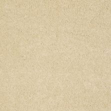 Anderson Tuftex Sasha Gold Sunset 00200_Z6945