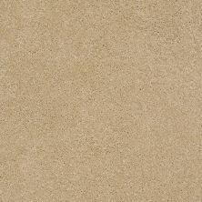 Anderson Tuftex Sasha Honeycomb 00201_Z6945