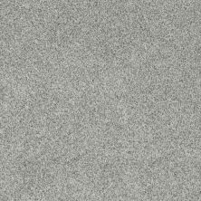 Anderson Tuftex Sasha Chrome 00511_Z6945