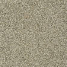 Anderson Tuftex Murphy Inca Gold 00115_Z6951