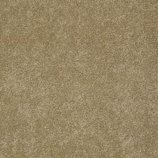 Anderson Tuftex Murphy Maple Glaze 00202_Z6951