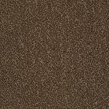 Anderson Tuftex Skippy Truffle 00723_Z6954