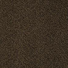 Anderson Tuftex Skippy Brownie 00733_Z6954