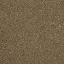 Anderson Tuftex Gus Maple Glaze 00202_Z6956