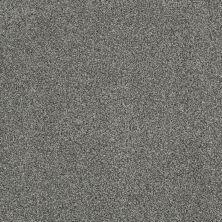 Anderson Tuftex Gus Pixie Dust 00511_Z6956