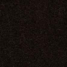 Anderson Tuftex Gus Bristol 00704_Z6956