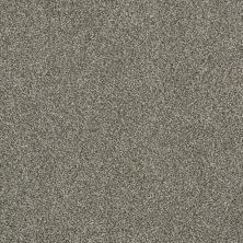 Anderson Tuftex Gus Moondust 00710_Z6956