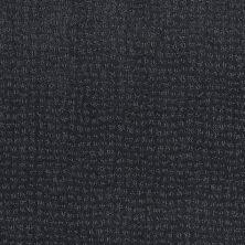 Anderson Tuftex Classics New Vibe Indigo 00446_Z6957