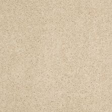 Anderson Tuftex American Home Fashions Happy All Over Icy Ivory 00122_ZA528