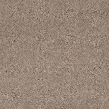 Anderson Tuftex American Home Fashions Happy All Over Mineralite 00574_ZA528