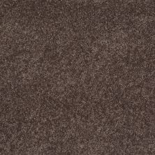 Anderson Tuftex American Home Fashions Happy All Over Smoky Quartz 00578_ZA528