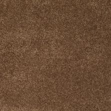 Anderson Tuftex American Home Fashions Happy All Over Vintage Brown 00775_ZA528