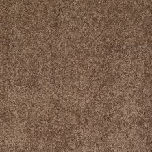Anderson Tuftex American Home Fashions Happy All Over Mocha Latte 00776_ZA528