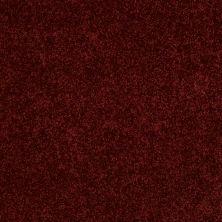 Anderson Tuftex American Home Fashions Happy All Over Fire Brick 00888_ZA528