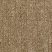 Anderson Tuftex American Home Fashions Caswell Arizona 00724_ZA775