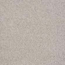 Anderson Tuftex American Home Fashions Beverly Crest Cement 00512_ZA777