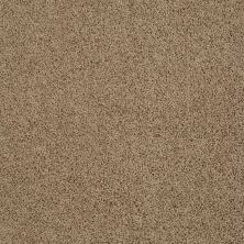 Anderson Tuftex American Home Fashions Beverly Crest Fine Umber 00726_ZA777