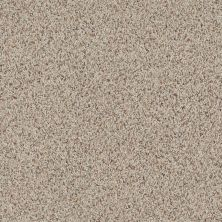 Anderson Tuftex American Home Fashions Beverly Crest Tweed 0121B_ZA777