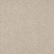 Anderson Tuftex American Home Fashions Ferndale Country Cream 00170_ZA786