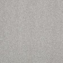 Anderson Tuftex American Home Fashions Ferndale Silver Tease 00512_ZA786