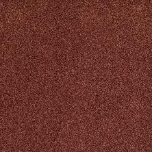 Anderson Tuftex American Home Fashions Ferndale Desert Dawn 00648_ZA786