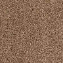 Anderson Tuftex American Home Fashions Ferndale Indian Spice 00654_ZA786