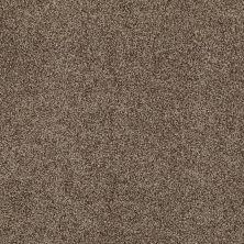 Anderson Tuftex American Home Fashions Ferndale Malted Crunch 00758_ZA786