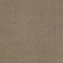 Anderson Tuftex American Home Fashions Another Place Cottage Stone 00735_ZA812