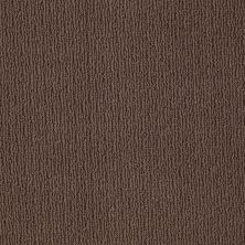 Anderson Tuftex American Home Fashions Another Place Kola Nut 00776_ZA812
