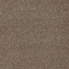 Anderson Tuftex American Home Fashions Nice Dreams I Simply Taupe 00572_ZA814