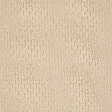 Anderson Tuftex American Home Fashions Ahead Of Time Calm Cream 00222_ZA820
