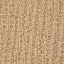 Anderson Tuftex American Home Fashions Ahead Of Time Winter Wheat 00724_ZA820