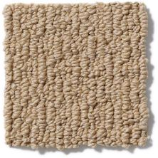 Anderson Tuftex American Home Fashions Ahead Of Time Winter Wheat 00724_ZA820