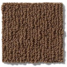 Anderson Tuftex American Home Fashions Ahead Of Time Modern Brown 00728_ZA820