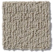Anderson Tuftex American Home Fashions Ahead Of Time Limestone 00732_ZA820