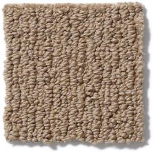Anderson Tuftex American Home Fashions Ahead Of Time Bali Sand 00782_ZA820