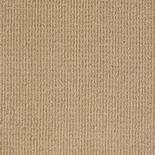 Anderson Tuftex American Home Fashions Baywood Ave. Aztec Sand 00212_ZA861