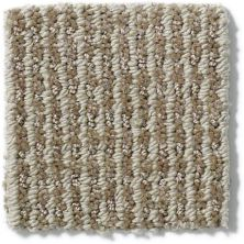 Anderson Tuftex American Home Fashions Baywood Ave. Neutral Taupe 00572_ZA861