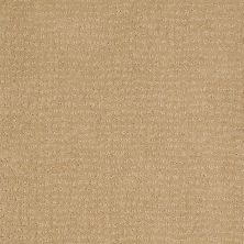 Anderson Tuftex American Home Fashions Pure Essence Golden Fleece 00263_ZA863