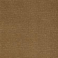 Anderson Tuftex American Home Fashions Pure Essence Medal Bronze 00276_ZA863