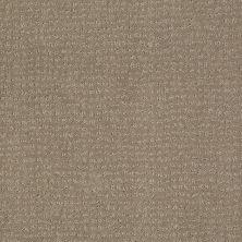 Anderson Tuftex American Home Fashions Pure Essence Porous Stone 00572_ZA863