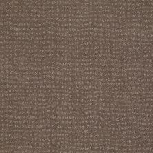 Anderson Tuftex American Home Fashions Pure Essence Glacial Rock 00595_ZA863