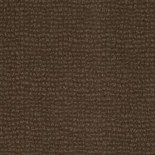 Anderson Tuftex American Home Fashions Pure Essence Shitake 00739_ZA863