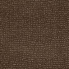 Anderson Tuftex American Home Fashions Pure Essence Timberline 00755_ZA863