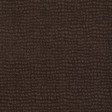 Anderson Tuftex American Home Fashions Pure Essence Dark Earth 00759_ZA863